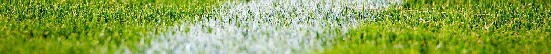 Labor Ins AG - Green Golf- und Sportrasen